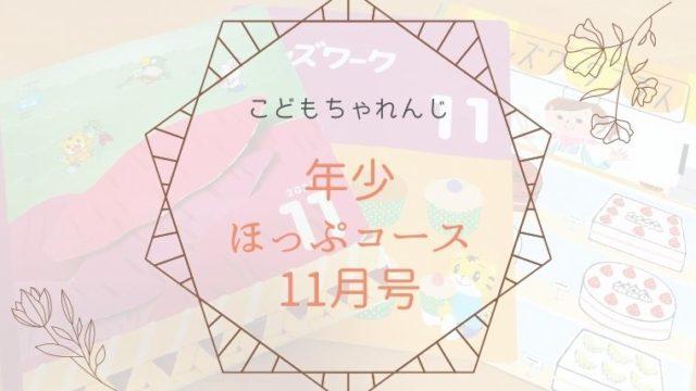【こどもチャレンジ】年少コース11月が届きました【感想】